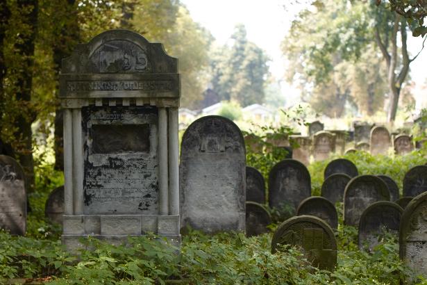 Macewy na cmentarzu w Piotrkowie Trybunalskim
