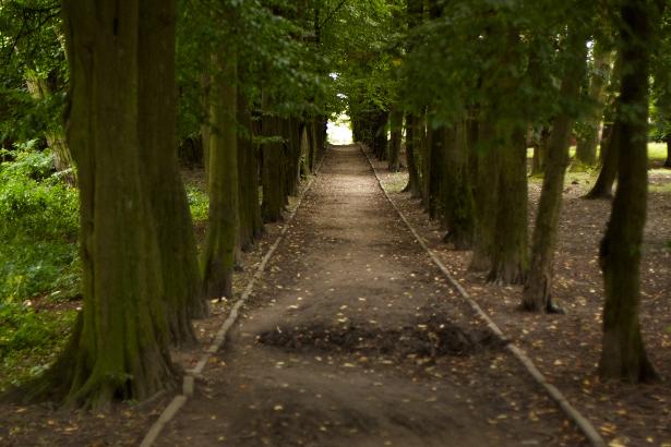 Alejka w południowej części Parku Belzackiego