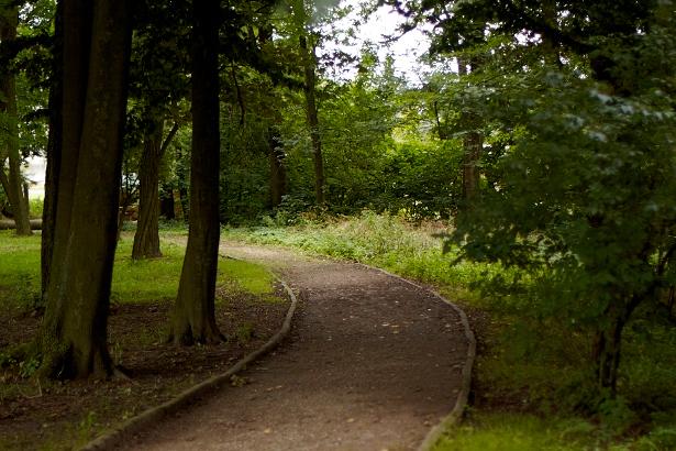 Alejka w Parku Belzackim - północna część.
