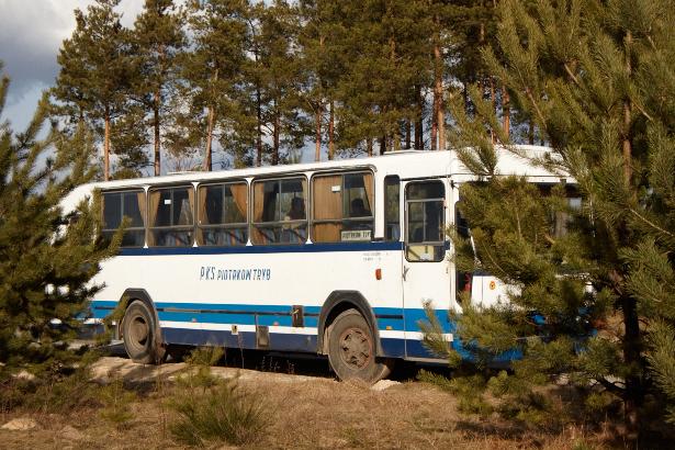 Autobus w lesie